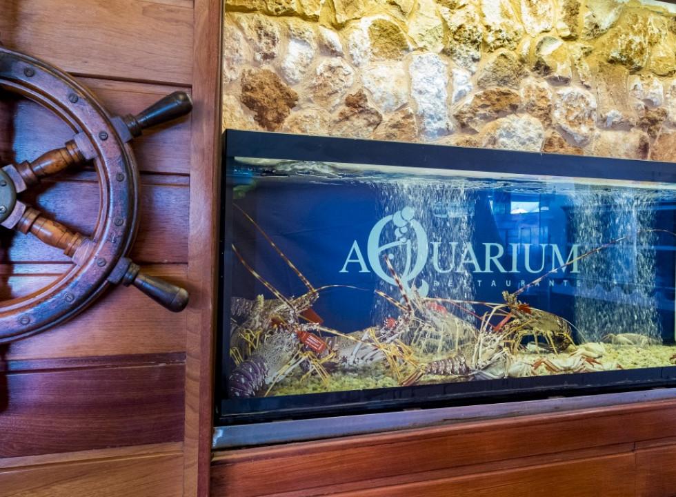 Restaurante Aquarium Cala'n Bosch_62